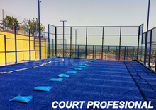 Court Profesional